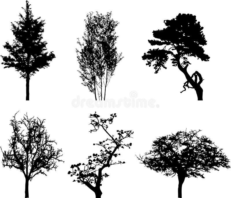 Placez les arbres d'isolement - 10 illustration de vecteur