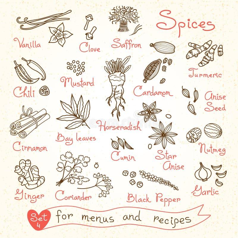 Placez les dessins des épices pour des menus de conception, recettes illustration de vecteur