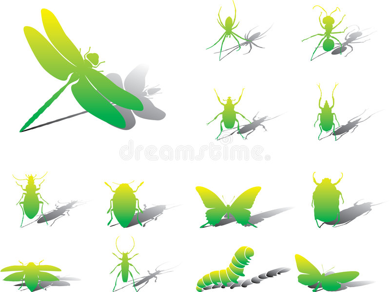 Placez les graphismes - 24A. Insectes illustration de vecteur