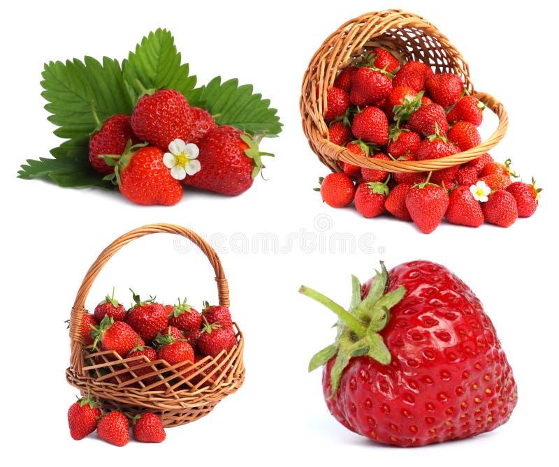Placez les images avec des fraises photos libres de droits