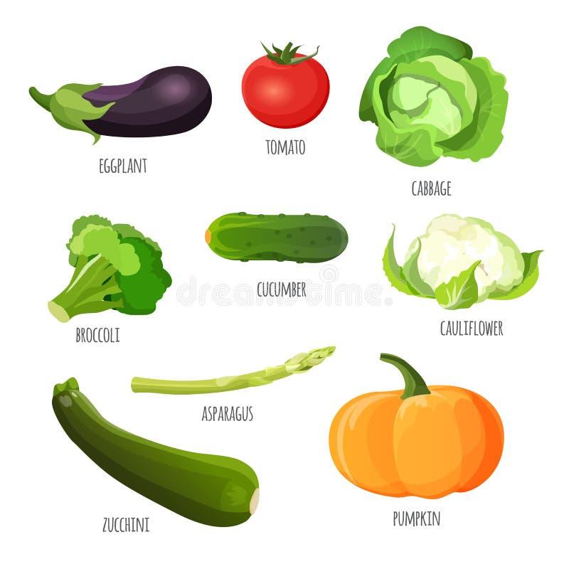 placez les légumes Aubergine, tomate, chou, brocoli, concombre, chou-fleur, potiron, courgette illustration de vecteur