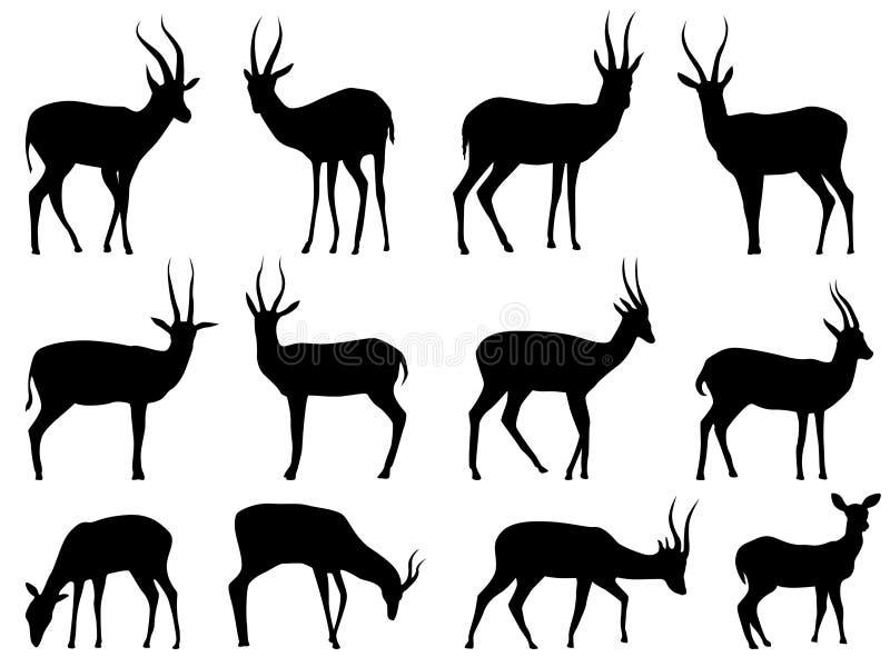Placez les silhouettes de vecteur des antilopes illustration de vecteur