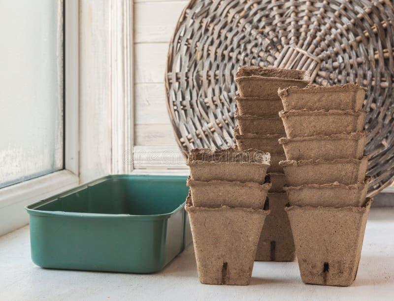 Placez pour les jeunes plantes grandissantes sur une fenêtre images stock