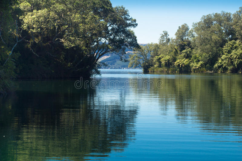 Placid Lake Rotoiti. Dense New Zealand native bush on the foreshore at Lake Rotoiti, Rotorua, NZ royalty free stock images