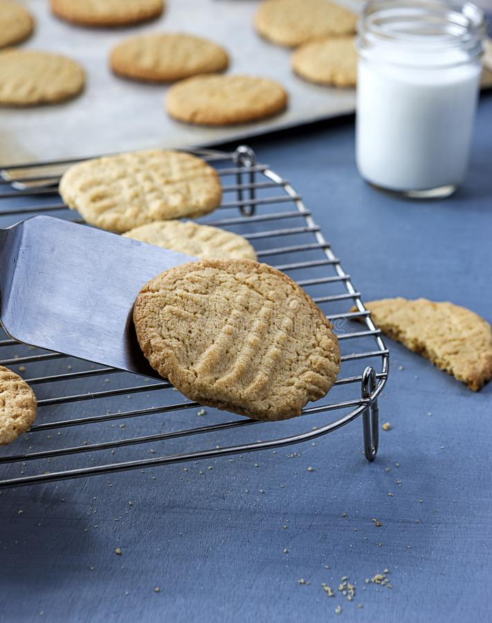 Placing a cookie on the rack. stock photos