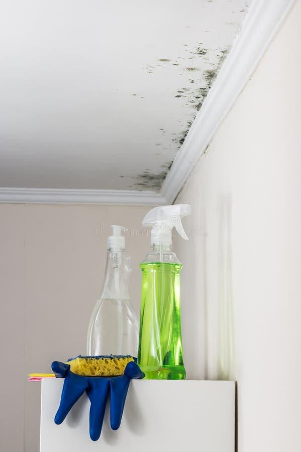 Plafond en muren van een het leven aanpassing door vorm, schoonmakende hulpmiddelen voor zijn verwijderingstribune wordt vervuild stock fotografie