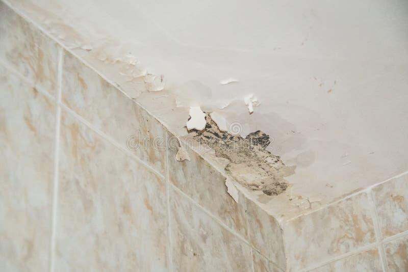 Plafond endommagé avec de l'eau photo stock