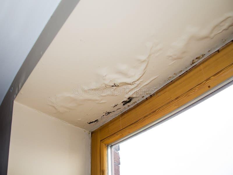 Plafond endommagé pareau à côté de filon-couche de fenêtre image libre de droits