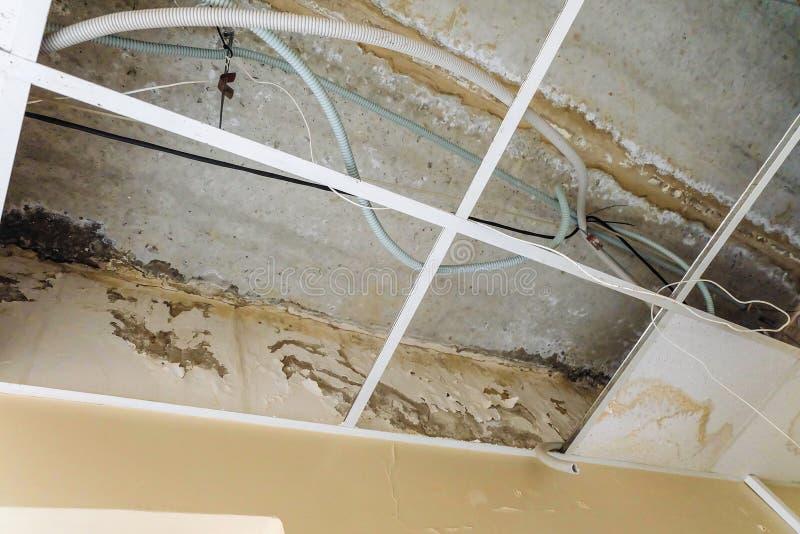 Plafond suspendu endommagé avec des fuites de l'eau photographie stock libre de droits