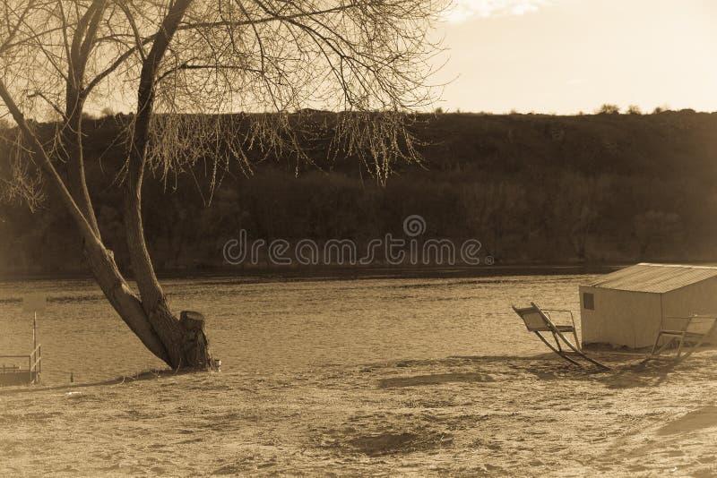 Plage abandonnée avec l'arbre nu et tente au coucher du soleil photographie stock