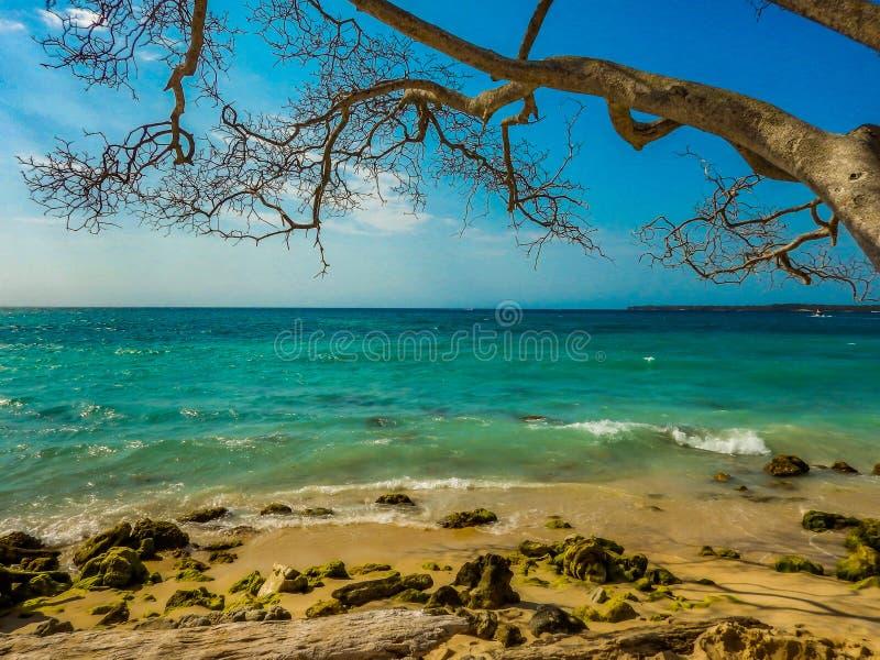 Plage agréable avec mer bleue photo libre de droits