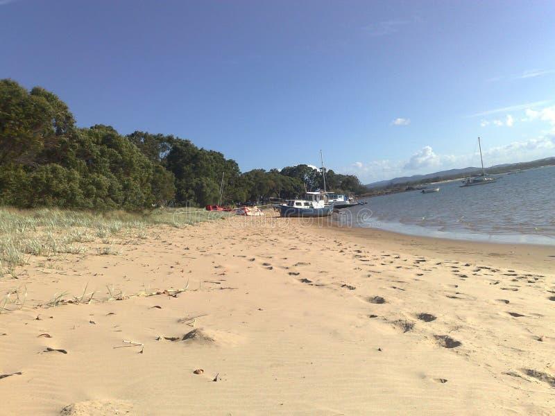 plage arénacée image stock