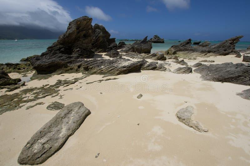 Plage avec le calcarenite stratifié sur Lord Howe Island photo stock