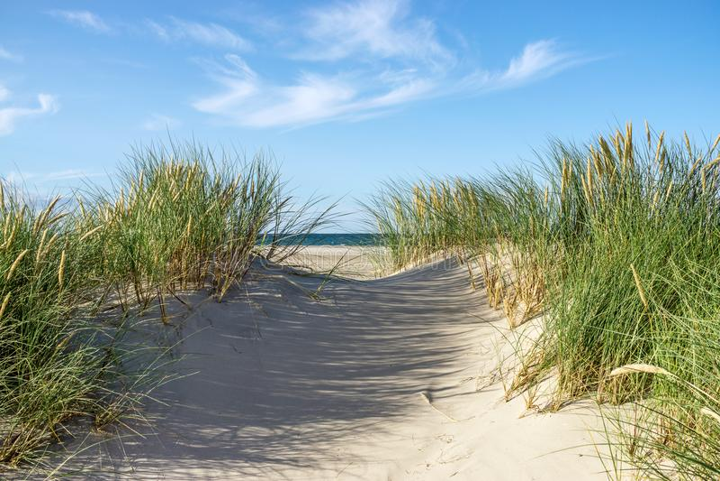 Plage avec les dunes de sable et l'herbe de gourbet images stock