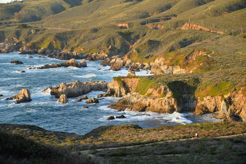 Plage centrale de côte de la Californie Big Sur, Etats-Unis photo libre de droits