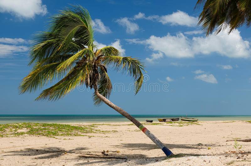 Plage colombienne photo stock