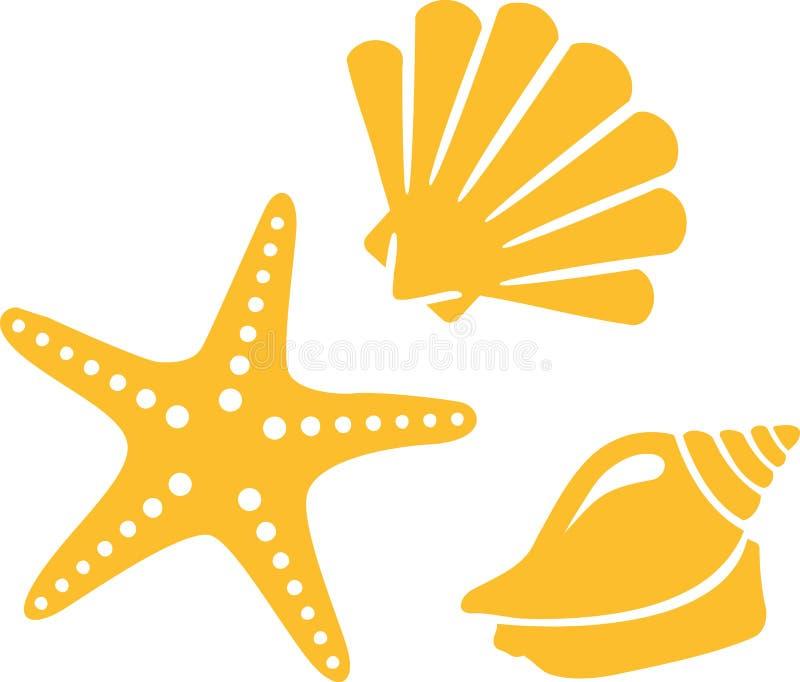 Plage d'étoile d'escargot de Shell illustration stock