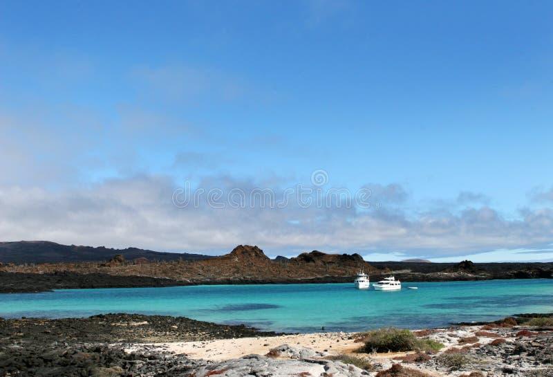 Plage d'île de Galapagos image stock