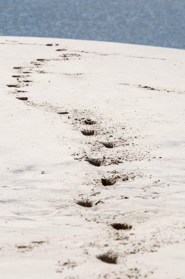Plage d'île de mer photo libre de droits