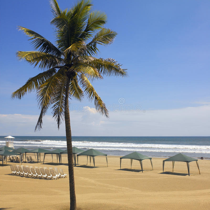 Plage d'Acapulco - Mexique photos libres de droits