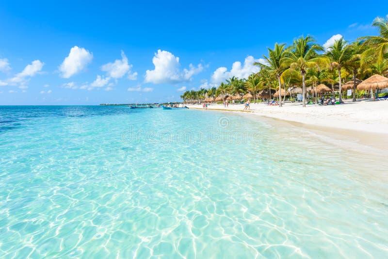 Plage d'Akumal - plage de baie de paradis dans Quintana Roo, Mexiko - c?te des Cara?bes photos stock