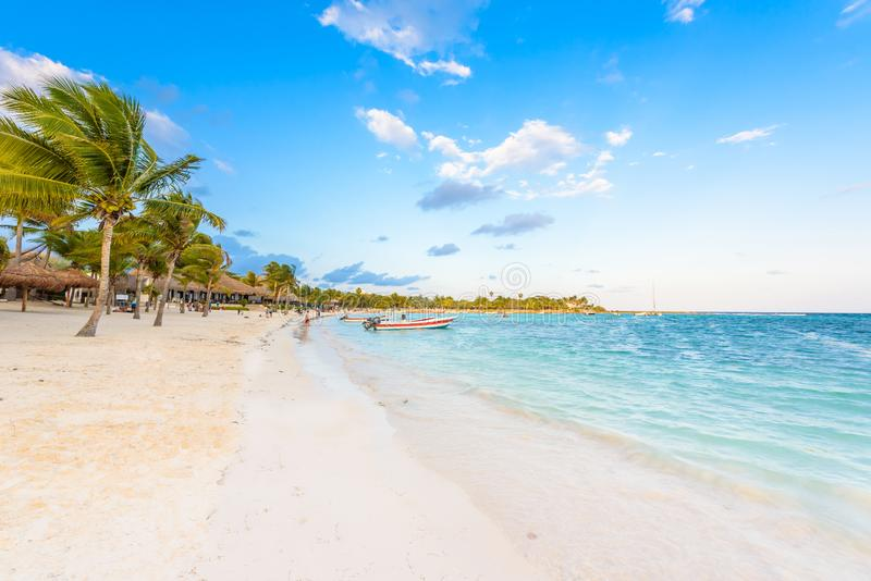 Plage d'Akumal - plage de baie de paradis dans Quintana Roo, Mexique - c?te des Cara?bes photographie stock libre de droits