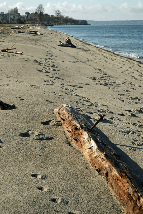 Plage d'Alki à Seattle occidental images stock