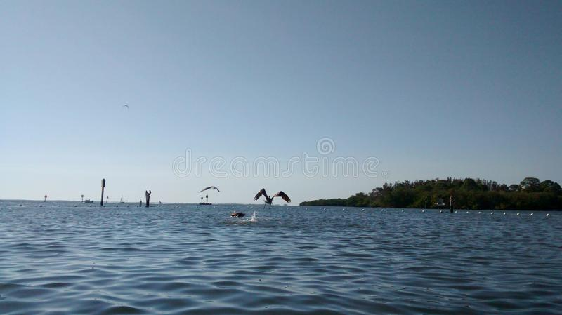 Plage d'Anclote images stock