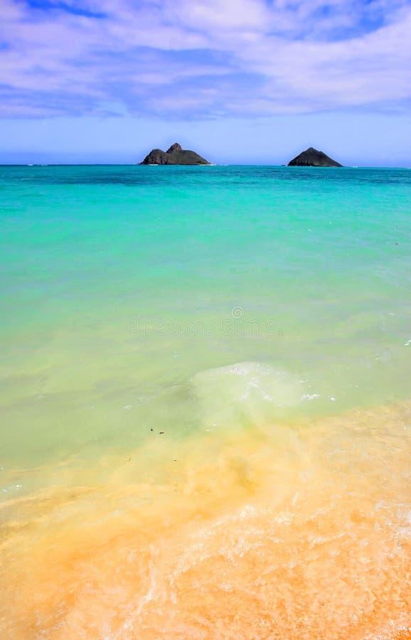 Plage d'Hawaï images libres de droits