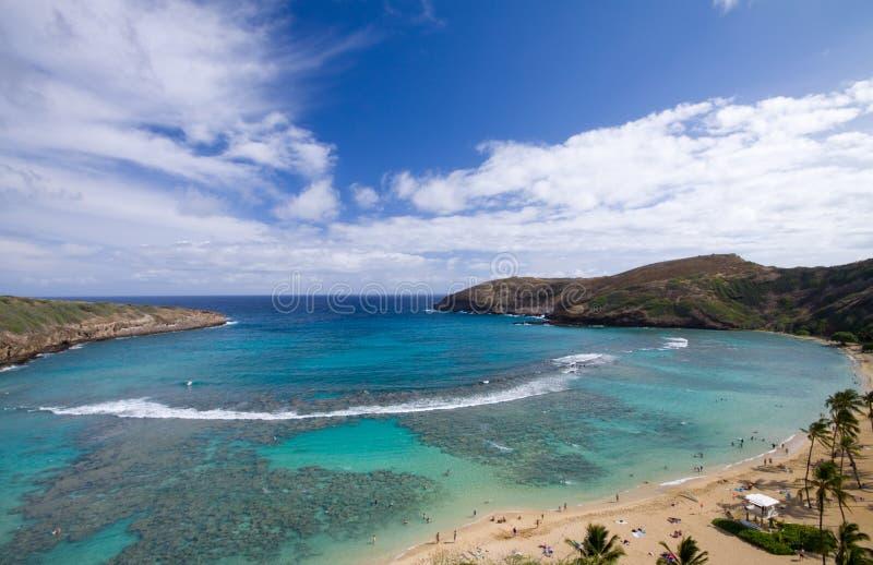 Plage d'Hawaï photo libre de droits