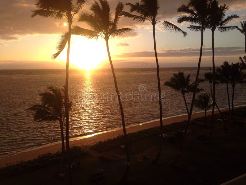 Plage d'Hawaï de lever de soleil photographie stock