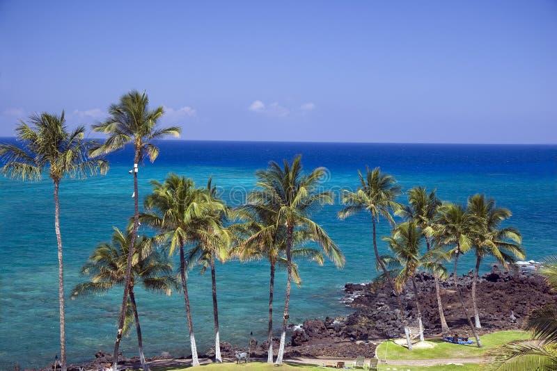 Plage d'Hawaï Kona images libres de droits