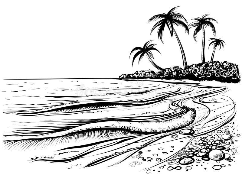 Plage d'océan ou de mer avec des paumes et des vagues, croquis Illustration noire et blanche de vecteur illustration de vecteur