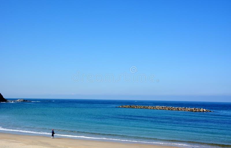 Download Plage D'octobre De Japonais/plage De Fukuok Ikinomathubara Image stock - Image du asie, octobre: 87707441
