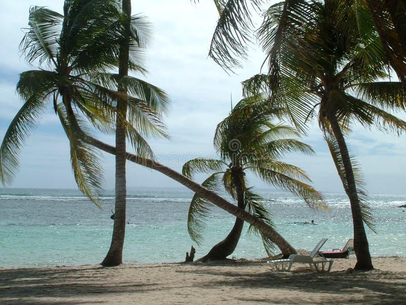 Plage dans le Caribean photos stock