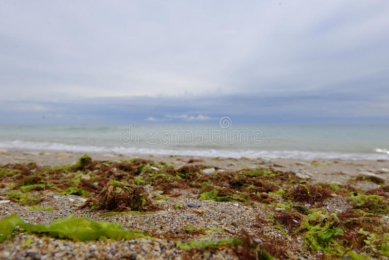 Plage dans Vama Veche photo stock