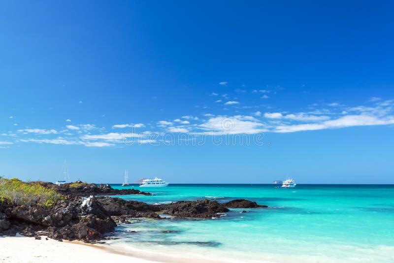 Plage de Bacha dans des îles de Galapagos photo stock