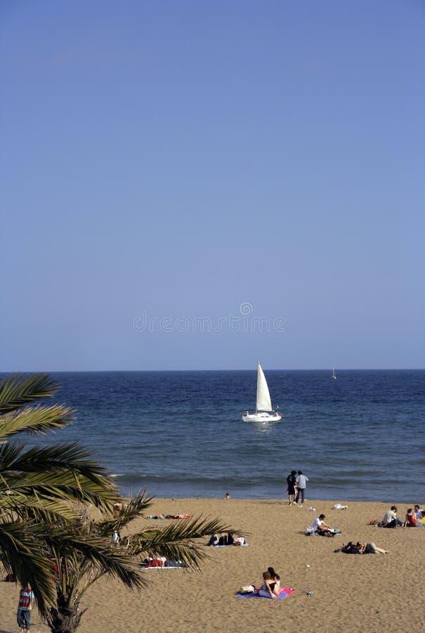 Download Plage de Barcelone image stock. Image du détendez, barcelone - 731805