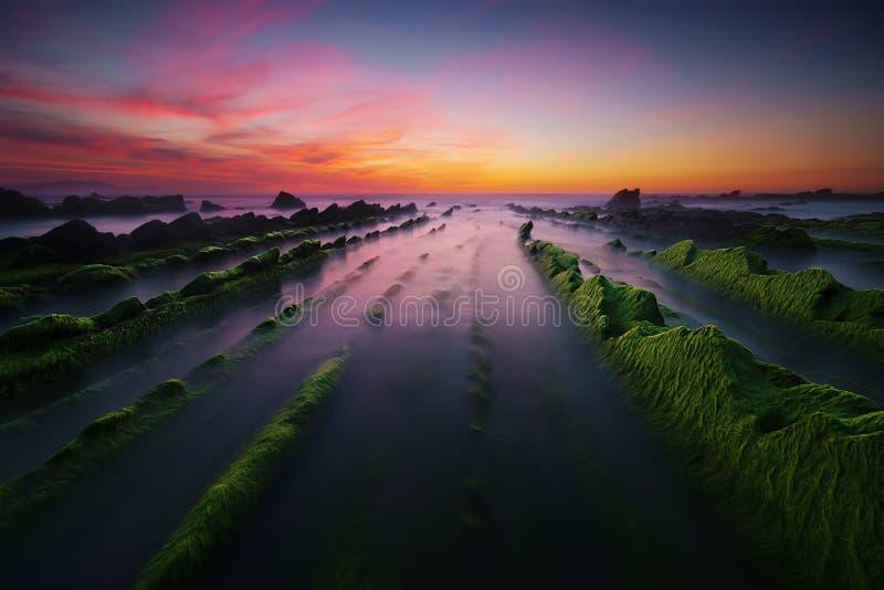Plage de Barrika au coucher du soleil avec l'algue photographie stock libre de droits