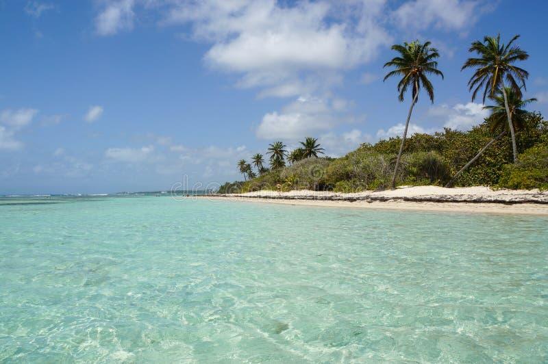 Plage de Bois-Jolan i Sainte-Anne, Guadeloupe royaltyfri fotografi