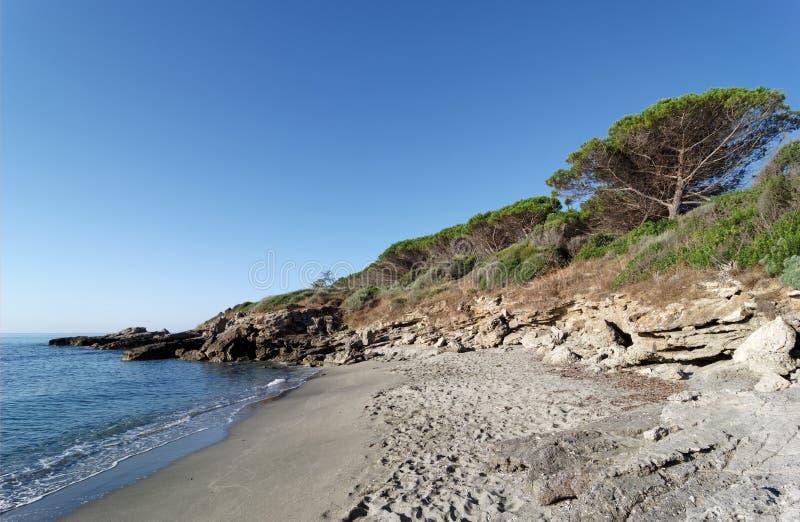 Plage de Bravone dans la côte de la Corse image stock