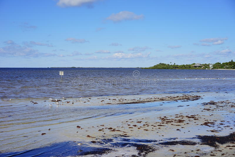 Plage de hernando de la Floride photo stock