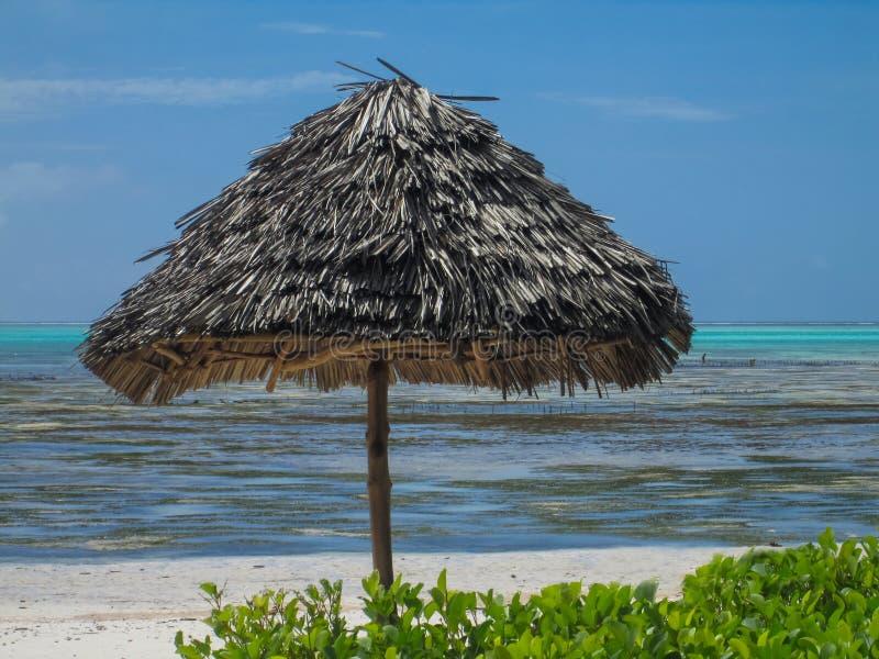 Plage de Jambiani à Zanzibar, Tanzanie photographie stock
