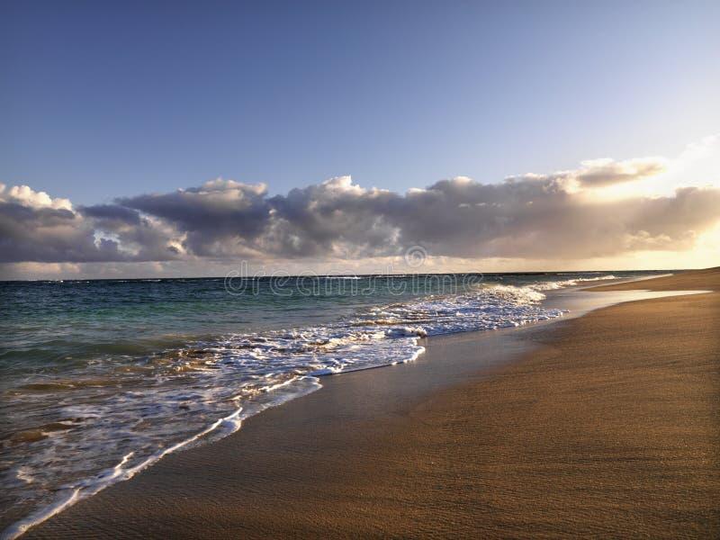 Plage de Maui Hawaï images libres de droits