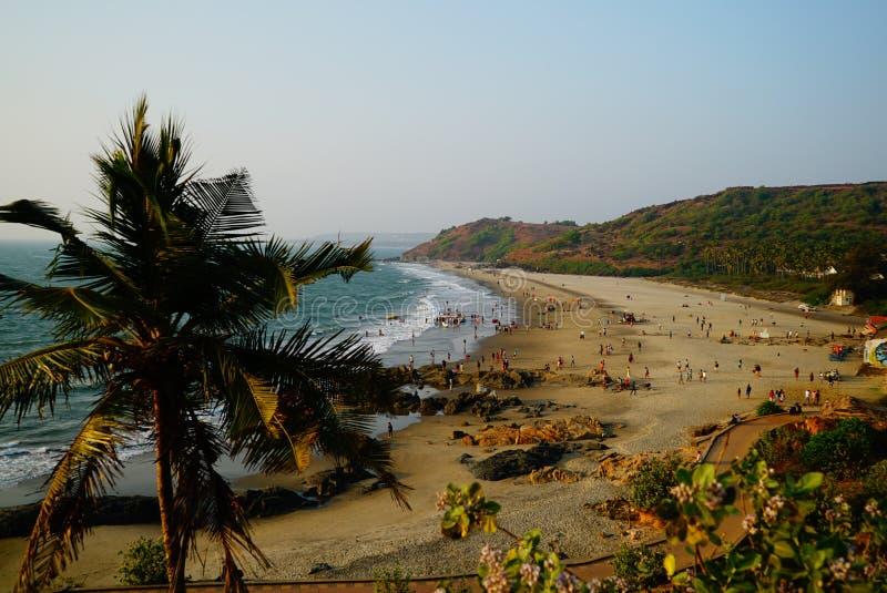 Plage de mer avec le palmier sur le premier plan photos stock
