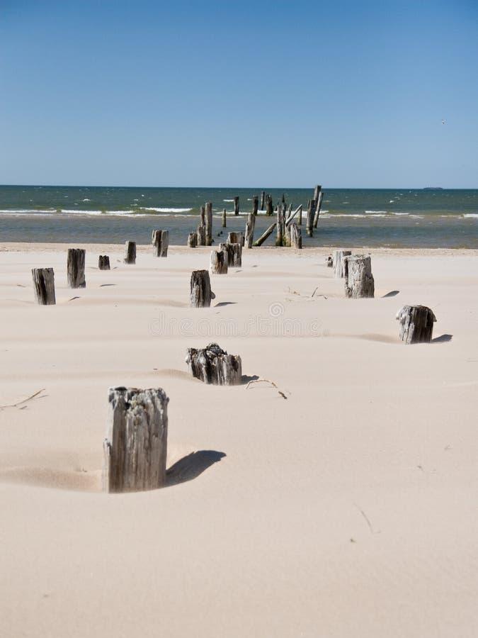 Plage de mer baltique avec les roches et le vieux bois photographie stock