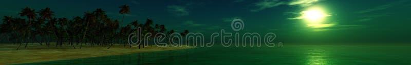 Plage de nuit de panorama, plage tropicale la nuit, paume sur la plage de nuit illustration de vecteur