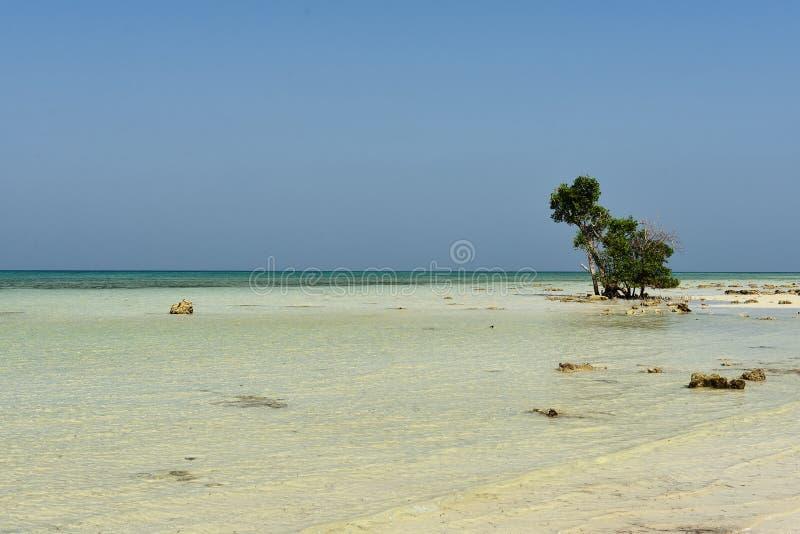 Plage de Paradise à l'île d'Andaman et de Nicobar, Inde photographie stock libre de droits