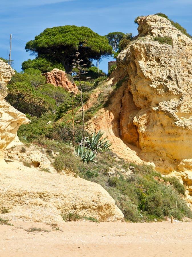Plage de Paradise dans la ville d'Albufeira au Portugal avec la nature, les dunes et la plage merveilleuses image stock