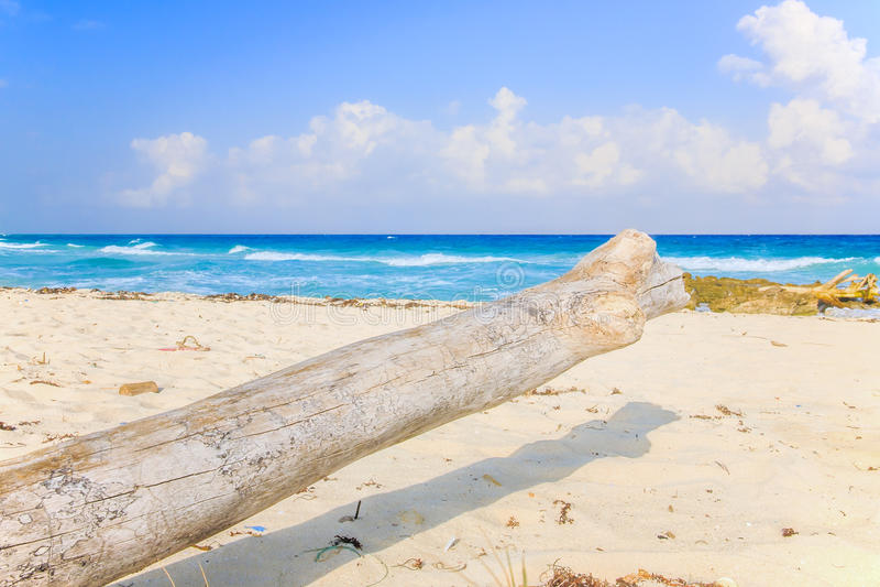 Plage de Playa del Carmen, Mexique images libres de droits
